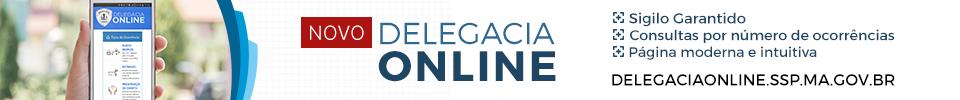 Acesse a nova Delegacia Online