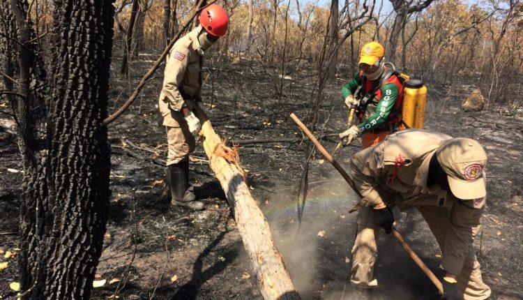 Bombeiros atuam contra queimadas no Maranhão
